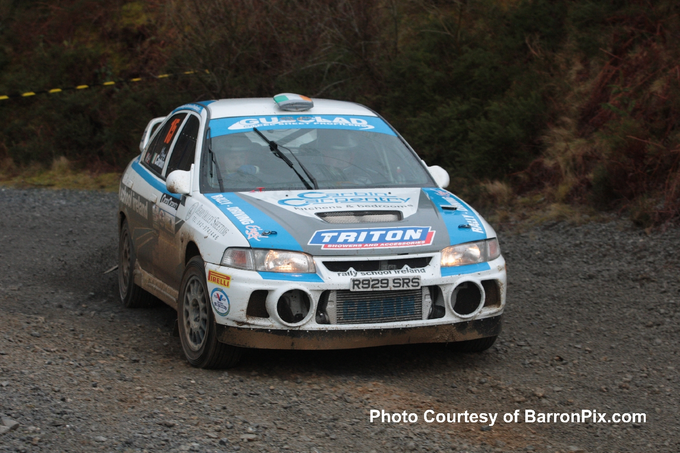 Carrick Forestry 3 2016